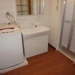 3面鏡、引き出しタイプ、 シングルレバーシャワー水洗