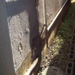 今回の外壁塗装の原因になった壁の剥離(塗膜下の水が浸入しモルタル壁が剥がれ落ちている)A